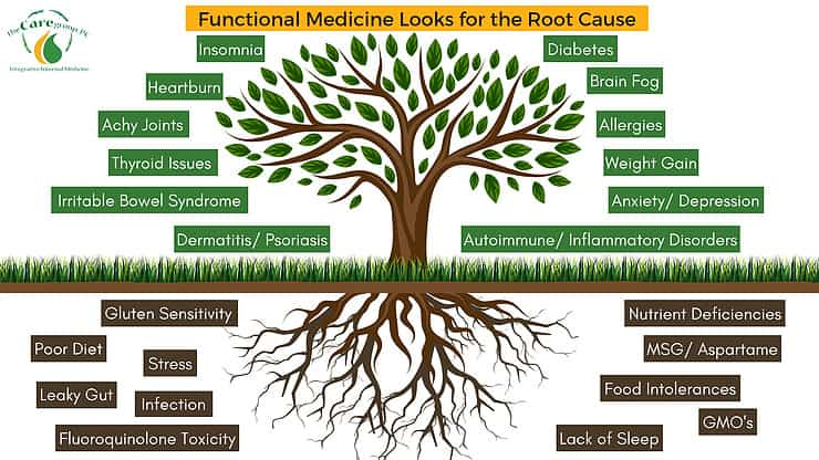Functional Medicine Diagram by The Care Group PC